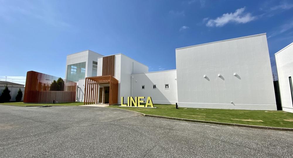 linea-1